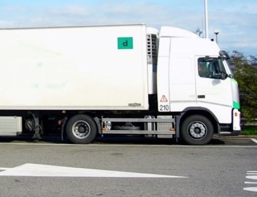 Der Berufskraftfahrer in der europäischen Union
